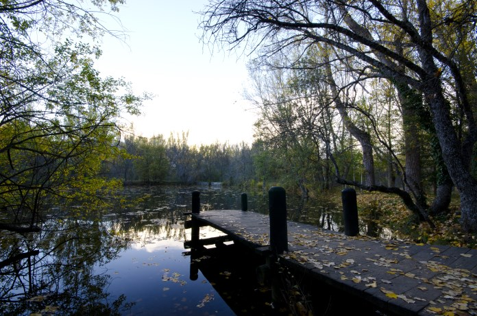Bosque Finlandes Rascafria