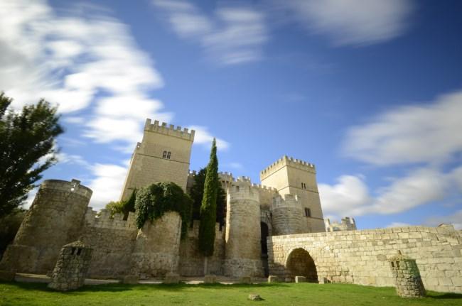 Castillo Palencia