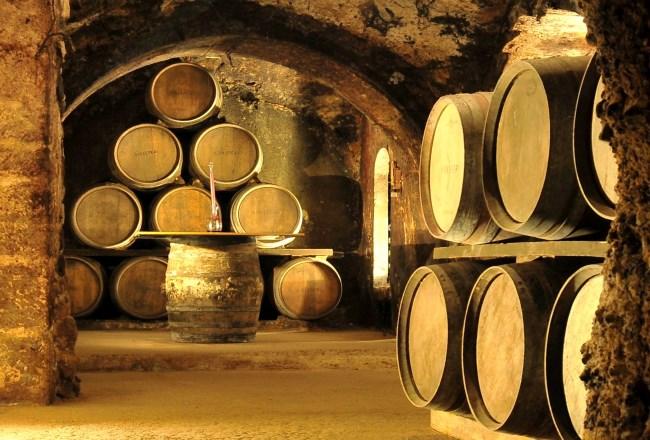 Visita Bodega Rioja