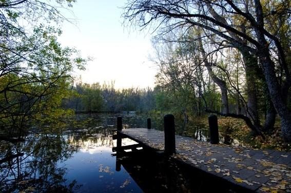 lago Bosque Finlandés Rascafría