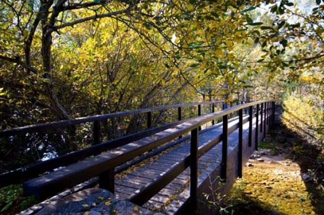 puente ruta cascada purgatorio