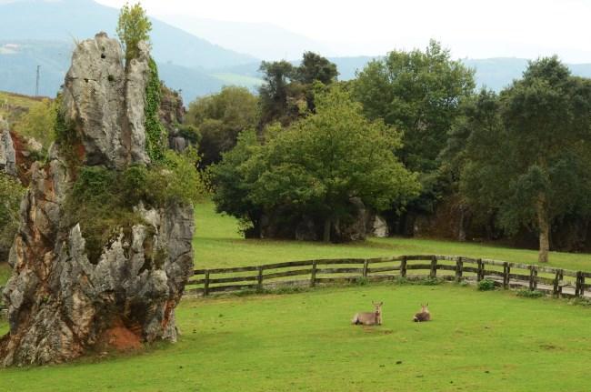 Cabarceno Cantabria