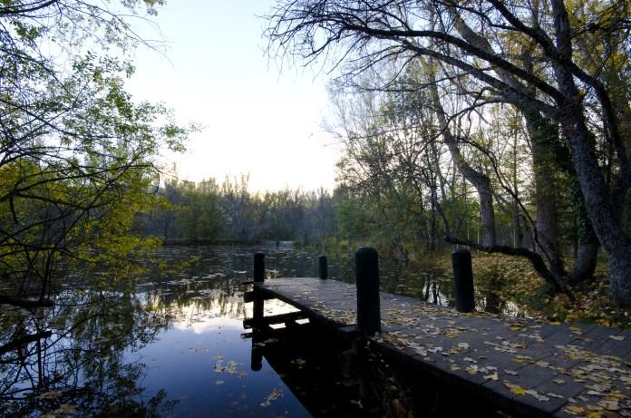 Resultado de imagen para finlandia y sus bosques