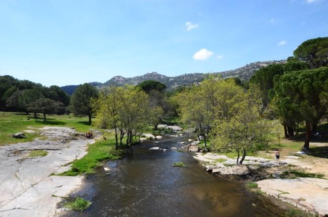 rio cofio