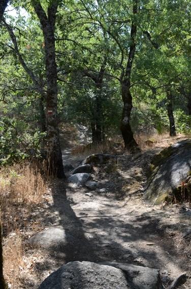 ruta ecologica el escorial