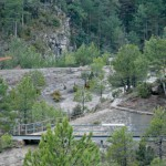 La Ruta de los Dinosaurios en Lleida