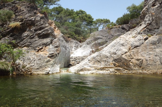 Charca de las Nutrias Estepona Málaga