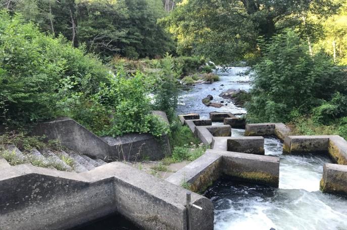 río eo san tirso de abres