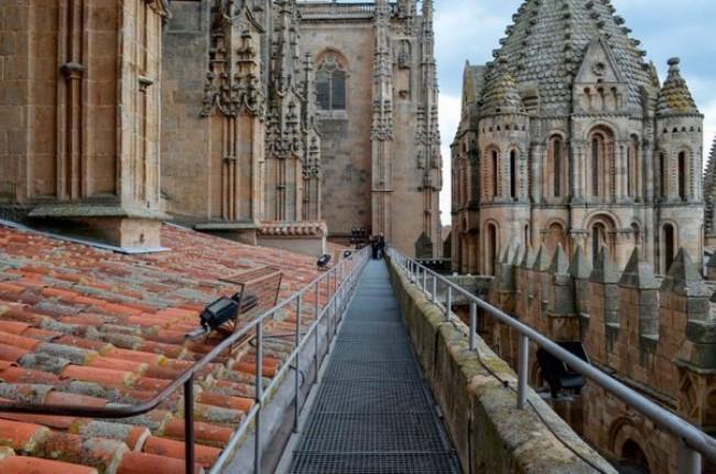 ieronimus catedral salamanca