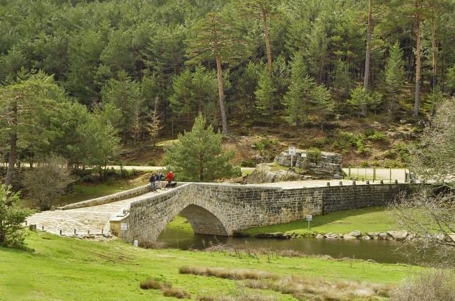 ruta de los puentes covaleda