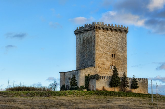 Castillo de Arenillas de Muñó Burgos