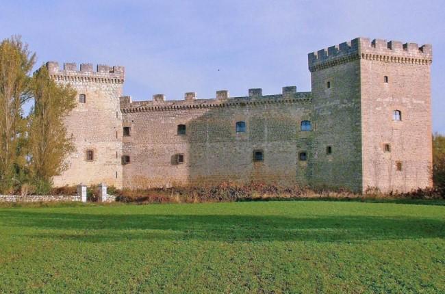 Castillo de Sotopalacios Burgos