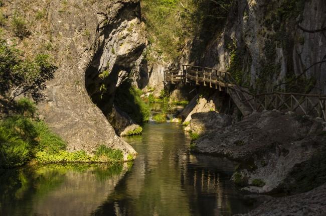 pasarelas río borosa