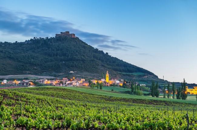 Castillo de Monjardín Navarra