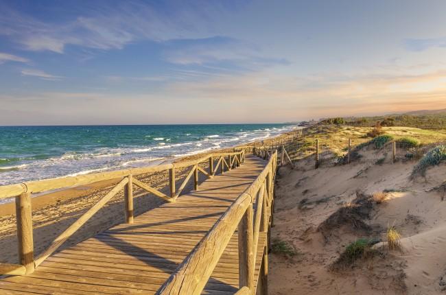 dunas de guardamar Alicante