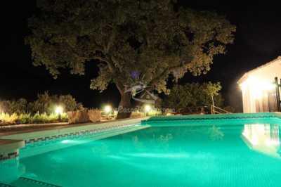 Casa Rural El Chaparro