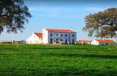 Casa Rural Finca Los Llanos