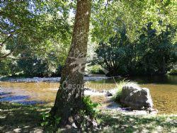 Oferta de Casa Rural El Secreto del Bosque
